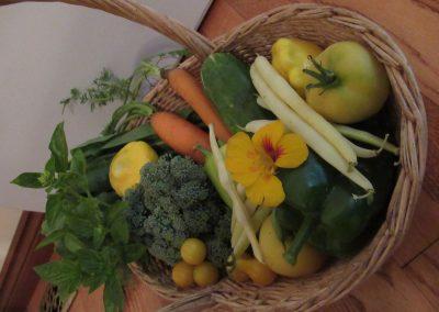 1st: D. 18. 1 : Harvest Basket